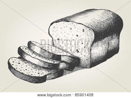 Bread Sketch