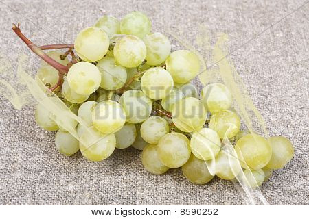 White Grape Varieties Muscat