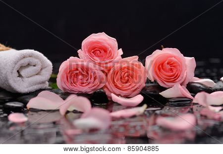 pink rose, petals with towel and therapy stones