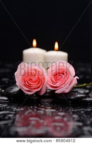 Still life with pink two rose and two candle on wet stones