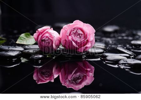Pink rose with therapy stones