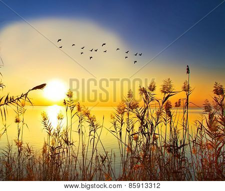 colorful sunrise on the lake