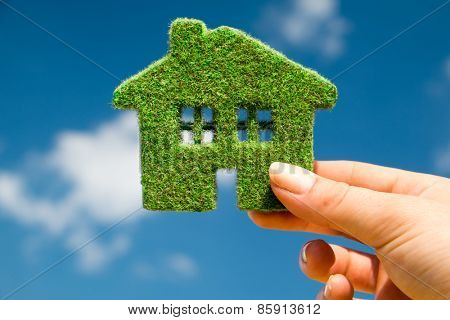 Grass home on a background of blue sky in human hands