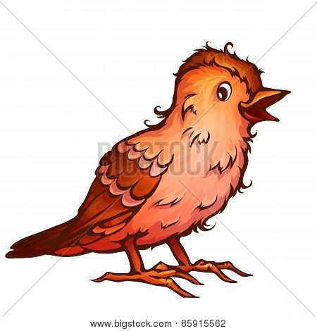 Vector illustration of cartoon cute brambling