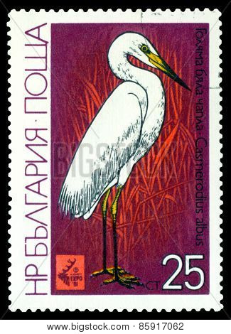 Vintage  Postage Stamp.  Bird Great White Heron.