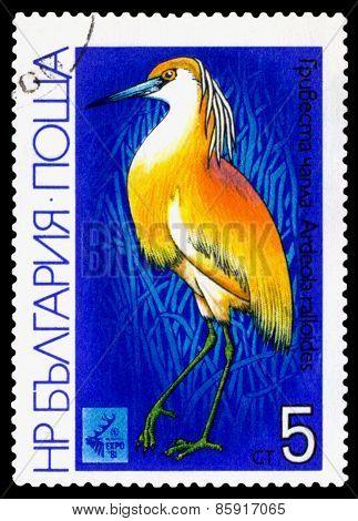 Vintage  Postage Stamp.  Bird Squacco Heron.