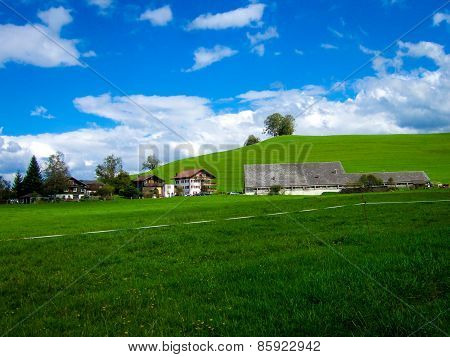 A Spring Field