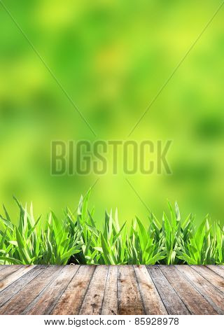 Summer grass and old wooden planks on green background