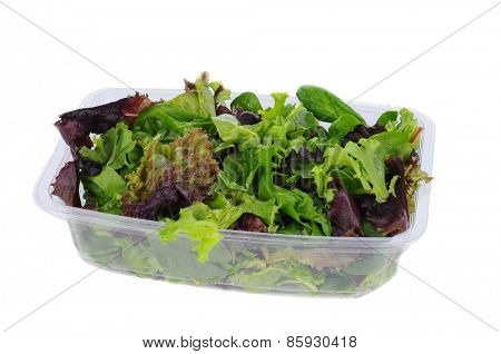 Fresh salad greens ina plastic tub. Closeup on a white background.