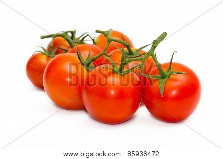 Fresh Tomatoes Isolated On White