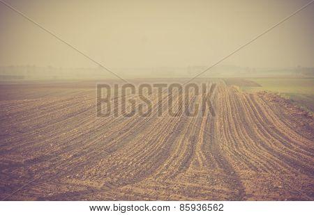 Vintage Photo Of Plowed Field