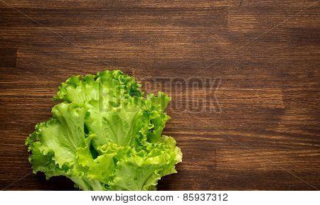 closeup isolate fresh lettuces on wooden desk