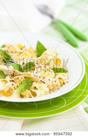 Pasta with cheese sauce and basil