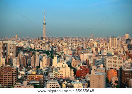 Tokyo urban skyline rooftop view with Skytree, Japan.