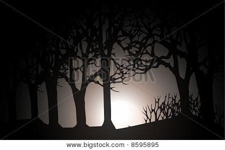 vector dark forest