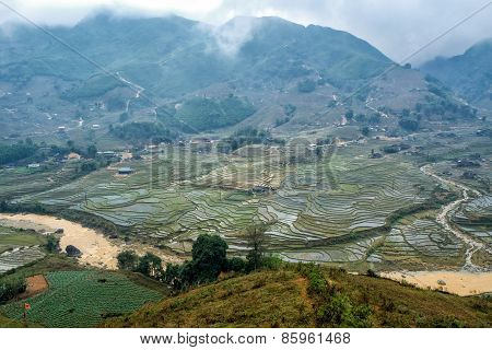 Terraced fields in Sapa, Vietnam