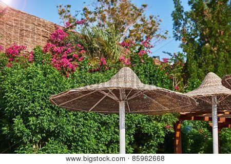 Thatched Sunshades In Summer