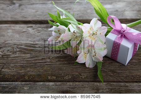 White Alstroemeria And Gift