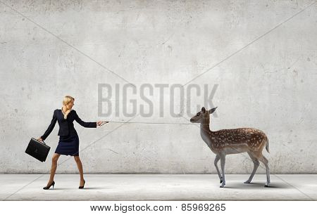 Young pretty businesswoman holding deer on lead