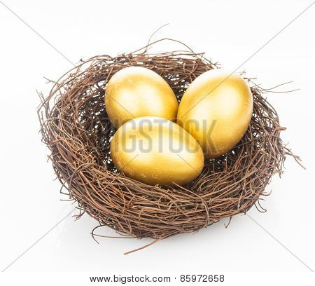 golden eggs in nest
