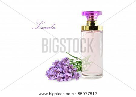 Perfume Bottle With Lavender