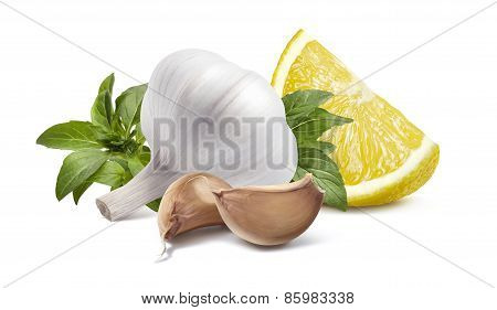 Garlic Head Lemon Basil Isolated On White Background