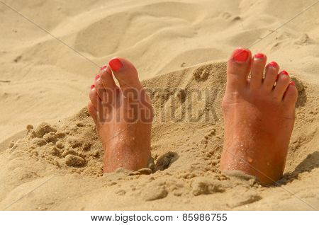 Woman feet on the sand