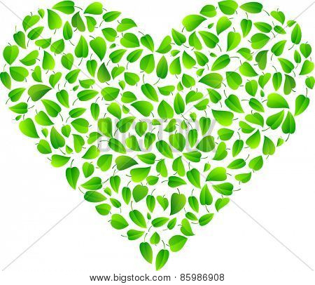 Heart made of fresh green leaves