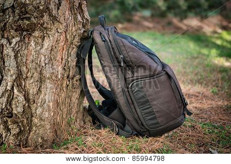 Black photography bag in the forest