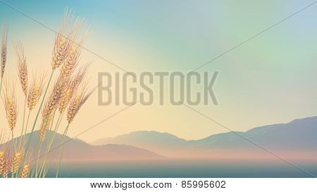 3D render of wheat with hills in the distance with retro effect