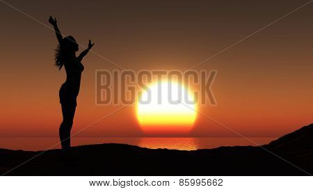3D render of a silhouette of a female against a sunset ocean