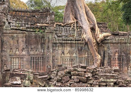 Closeup Of Ruined Wall Of An Ancient Khmer Temple With Tree Growing On Top Of It
