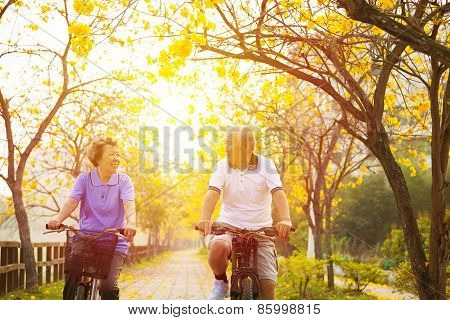 Happy Senior Couple Ride On Bicycle  In The Park