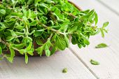 pic of origanum majorana  - raw green herb marjoram in the bowl on a white wooden rustic table - JPG