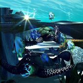 foto of butterfly fish  - Underwater world with swimming turtles and butterfly fish - JPG