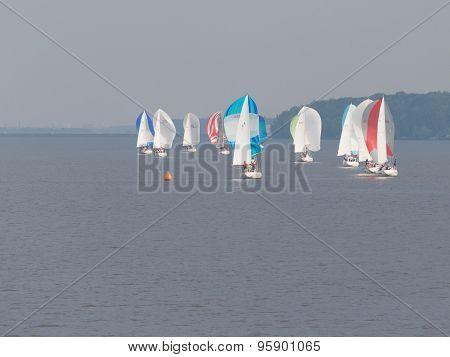 Bright Sailboats Sailing