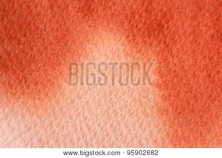 Macro Burnt Orange Watercolor  2