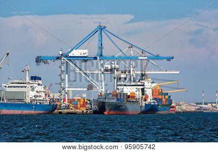 Cargo Sea Port With Cranes