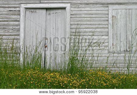 Barn Door, Yellow Flowers (horizontal)