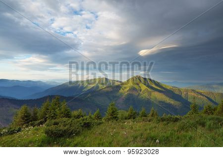 Mountain landscape in the morning. Fir forest on the slope. Beautiful top. View of the Romanian mountain Farkau border with Ukraine and Romania. Carpathians