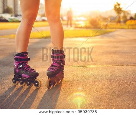 Close up on roller skate shoes