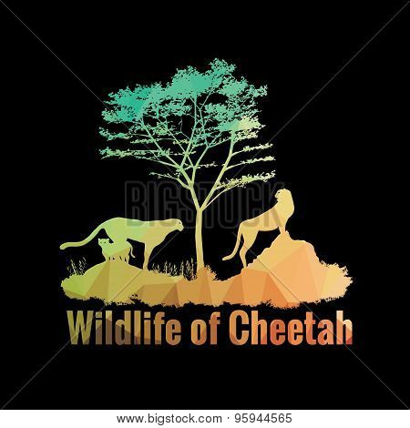 Wildlife of Cheetah low poly abstract vector design