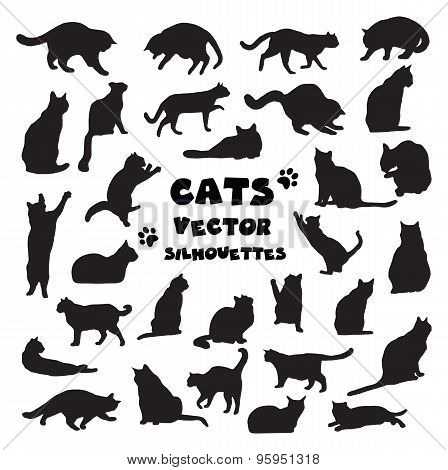 Collection Of Vector Cats Silhouettes