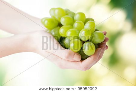 healthy eating, diet, organic food and people concept - close up of woman hands holding green grape bunch over natural background