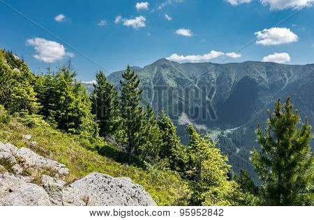 Amazing Summer Mountains Under Blue Sky