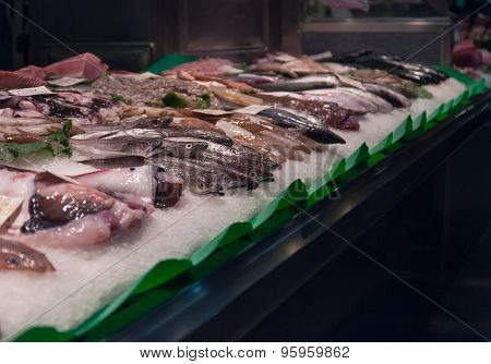 Fresh fish on the market.