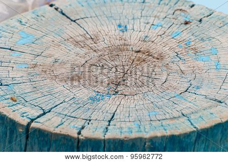 Old Piece Of Sawn Off  Wooden Tree Stump