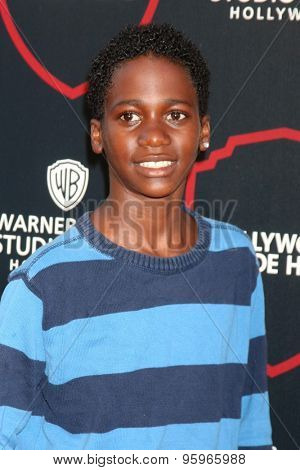 LOS ANGELES - JUL 14:  Damarion Hall at the Warner Bros. Studio Tour Hollywood Expansion Official Unveiling, Stage 48: Script To Screen at the Warner Brothers Studio on July 14, 2015 in Burbank, CA
