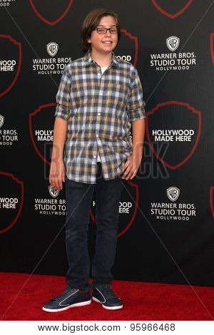 LOS ANGELES - JUL 14:  Gabe Eggerling at the Warner Bros. Studio Tour Hollywood Expansion Official Unveiling, Stage 48: Script To Screen at the Warner Brothers Studio on July 14, 2015 in Burbank, CA