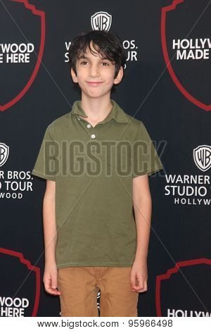 LOS ANGELES - JUL 14:  Adam Chernick at the Warner Bros. Studio Tour Hollywood Expansion Official Unveiling, Stage 48: Script To Screen at the Warner Brothers Studio on July 14, 2015 in Burbank, CA